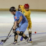 California Golden Seals vs Quebec Nordiques Bermuda Ball Hockey, January 21 2015-44