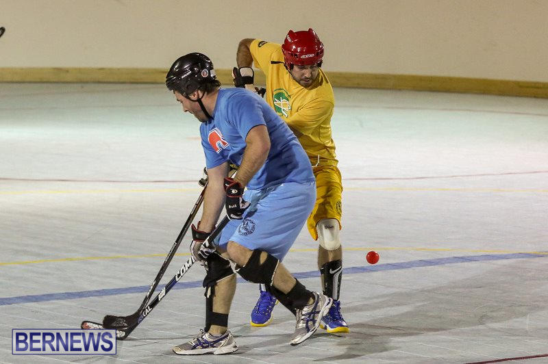 California-Golden-Seals-vs-Quebec-Nordiques-Bermuda-Ball-Hockey-January-21-2015-44