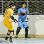 California Golden Seals vs Quebec Nordiques Bermuda Ball Hockey, January 21 2015-45