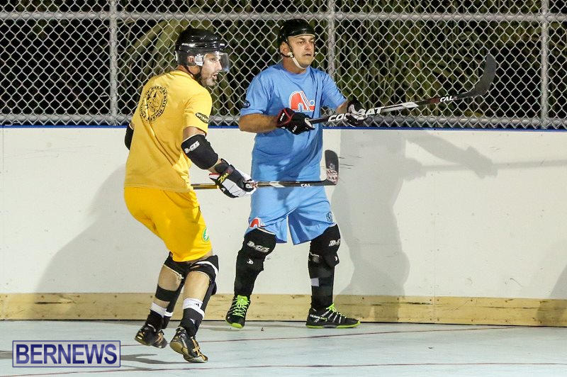 California-Golden-Seals-vs-Quebec-Nordiques-Bermuda-Ball-Hockey-January-21-2015-45