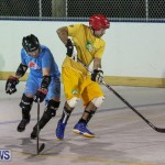 California Golden Seals vs Quebec Nordiques Bermuda Ball Hockey, January 21 2015-46