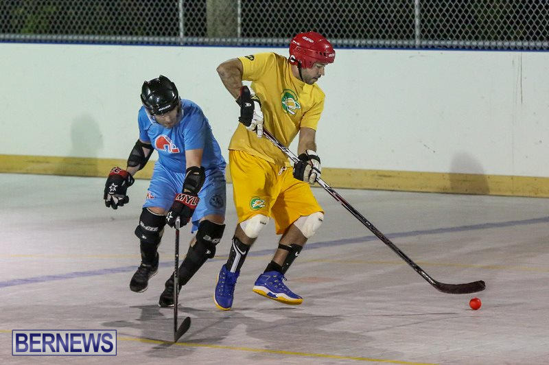 California-Golden-Seals-vs-Quebec-Nordiques-Bermuda-Ball-Hockey-January-21-2015-46