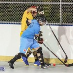 California Golden Seals vs Quebec Nordiques Bermuda Ball Hockey, January 21 2015-47