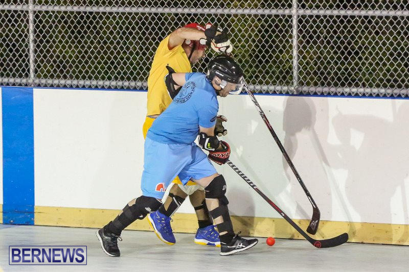 California-Golden-Seals-vs-Quebec-Nordiques-Bermuda-Ball-Hockey-January-21-2015-47