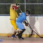 California Golden Seals vs Quebec Nordiques Bermuda Ball Hockey, January 21 2015-48