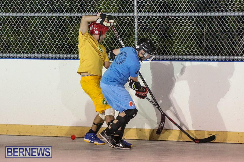 California-Golden-Seals-vs-Quebec-Nordiques-Bermuda-Ball-Hockey-January-21-2015-48