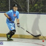 California Golden Seals vs Quebec Nordiques Bermuda Ball Hockey, January 21 2015-49