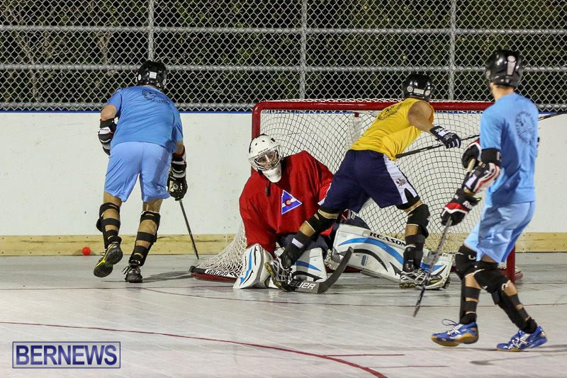 California-Golden-Seals-vs-Quebec-Nordiques-Bermuda-Ball-Hockey-January-21-2015-5