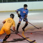 California Golden Seals vs Quebec Nordiques Bermuda Ball Hockey, January 21 2015-50