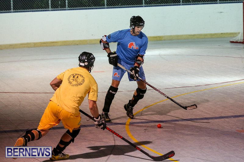 California-Golden-Seals-vs-Quebec-Nordiques-Bermuda-Ball-Hockey-January-21-2015-50