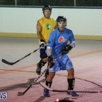 California Golden Seals vs Quebec Nordiques Bermuda Ball Hockey, January 21 2015-51
