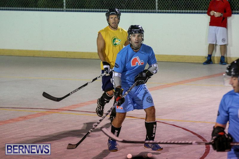 California-Golden-Seals-vs-Quebec-Nordiques-Bermuda-Ball-Hockey-January-21-2015-51