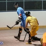 California Golden Seals vs Quebec Nordiques Bermuda Ball Hockey, January 21 2015-52