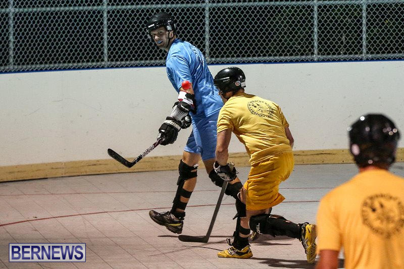 California-Golden-Seals-vs-Quebec-Nordiques-Bermuda-Ball-Hockey-January-21-2015-52