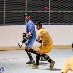 California Golden Seals vs Quebec Nordiques Bermuda Ball Hockey, January 21 2015-53