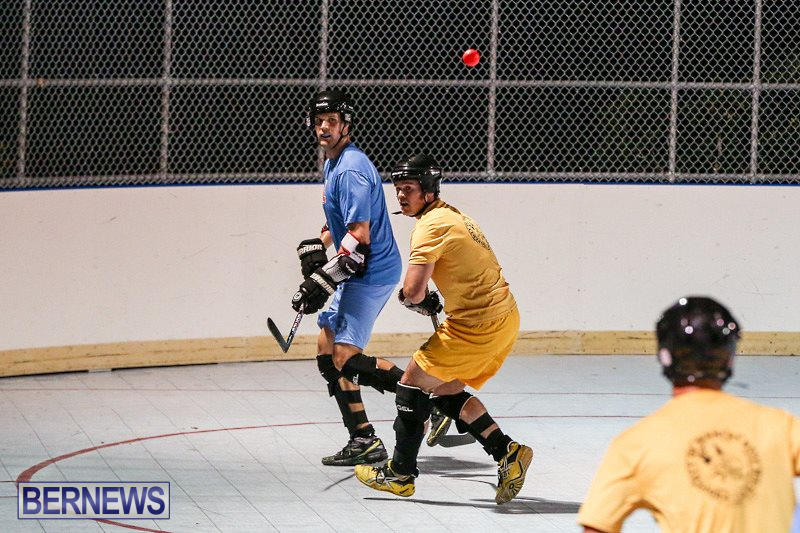 California-Golden-Seals-vs-Quebec-Nordiques-Bermuda-Ball-Hockey-January-21-2015-53