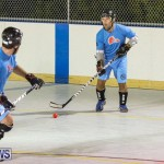 California Golden Seals vs Quebec Nordiques Bermuda Ball Hockey, January 21 2015-54