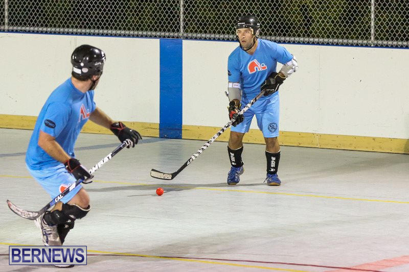 California-Golden-Seals-vs-Quebec-Nordiques-Bermuda-Ball-Hockey-January-21-2015-54