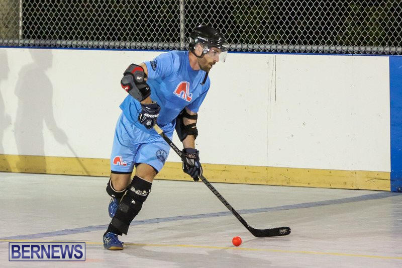 California-Golden-Seals-vs-Quebec-Nordiques-Bermuda-Ball-Hockey-January-21-2015-55