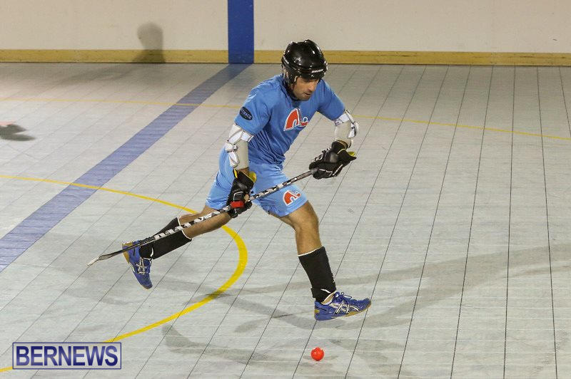 California-Golden-Seals-vs-Quebec-Nordiques-Bermuda-Ball-Hockey-January-21-2015-56