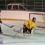 California Golden Seals vs Quebec Nordiques Bermuda Ball Hockey, January 21 2015-57