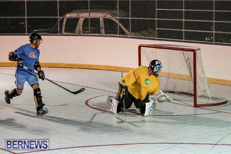 California-Golden-Seals-vs-Quebec-Nordiques-Bermuda-Ball-Hockey-January-21-2015-57