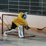 California Golden Seals vs Quebec Nordiques Bermuda Ball Hockey, January 21 2015-58