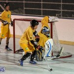 California Golden Seals vs Quebec Nordiques Bermuda Ball Hockey, January 21 2015-59