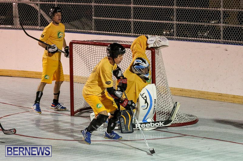California-Golden-Seals-vs-Quebec-Nordiques-Bermuda-Ball-Hockey-January-21-2015-59