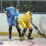 California Golden Seals vs Quebec Nordiques Bermuda Ball Hockey, January 21 2015-6