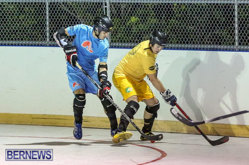 California-Golden-Seals-vs-Quebec-Nordiques-Bermuda-Ball-Hockey-January-21-2015-6