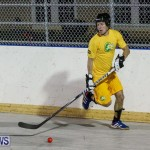 California Golden Seals vs Quebec Nordiques Bermuda Ball Hockey, January 21 2015-60