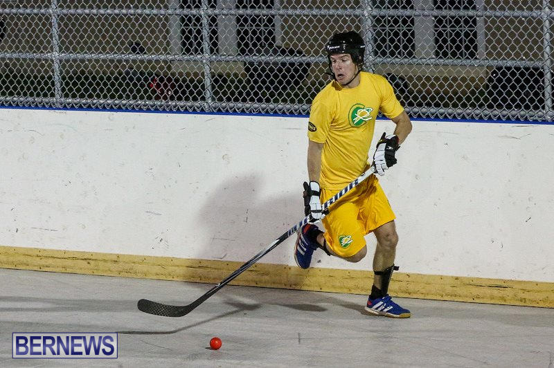 California-Golden-Seals-vs-Quebec-Nordiques-Bermuda-Ball-Hockey-January-21-2015-60