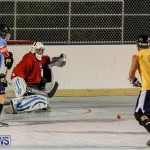 California Golden Seals vs Quebec Nordiques Bermuda Ball Hockey, January 21 2015-61