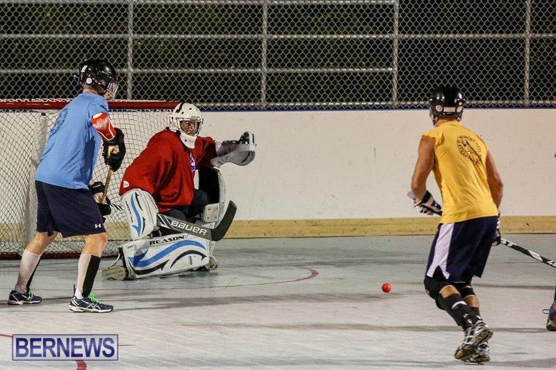 California-Golden-Seals-vs-Quebec-Nordiques-Bermuda-Ball-Hockey-January-21-2015-61