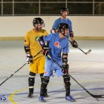 California Golden Seals vs Quebec Nordiques Bermuda Ball Hockey, January 21 2015-62