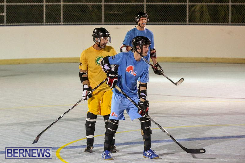 California-Golden-Seals-vs-Quebec-Nordiques-Bermuda-Ball-Hockey-January-21-2015-62