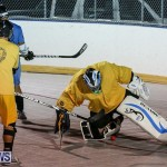 California Golden Seals vs Quebec Nordiques Bermuda Ball Hockey, January 21 2015-63