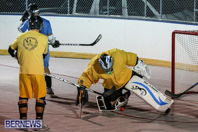 California-Golden-Seals-vs-Quebec-Nordiques-Bermuda-Ball-Hockey-January-21-2015-63