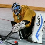 California Golden Seals vs Quebec Nordiques Bermuda Ball Hockey, January 21 2015-64