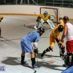 California Golden Seals vs Quebec Nordiques Bermuda Ball Hockey, January 21 2015-65