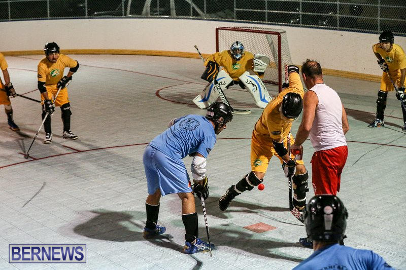 California-Golden-Seals-vs-Quebec-Nordiques-Bermuda-Ball-Hockey-January-21-2015-65