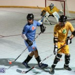 California Golden Seals vs Quebec Nordiques Bermuda Ball Hockey, January 21 2015-66