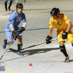 California Golden Seals vs Quebec Nordiques Bermuda Ball Hockey, January 21 2015-67