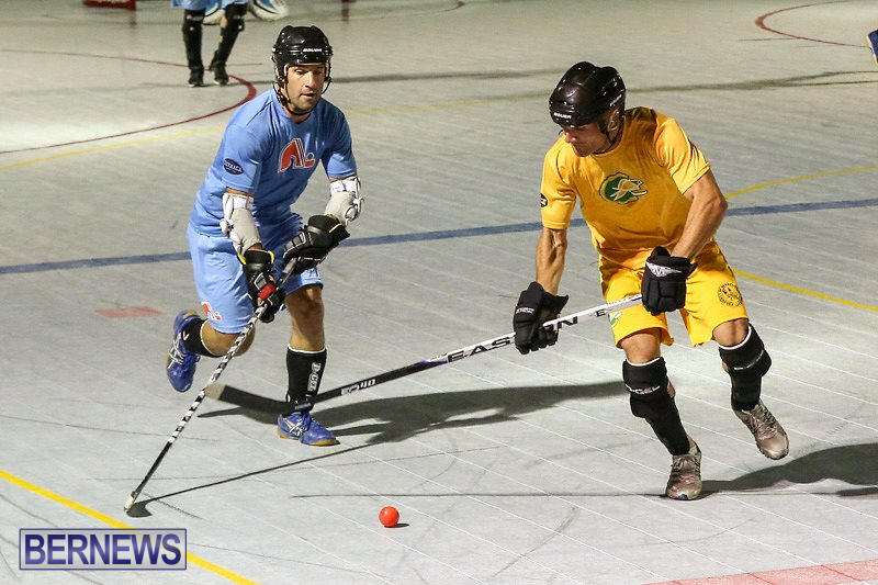 California-Golden-Seals-vs-Quebec-Nordiques-Bermuda-Ball-Hockey-January-21-2015-67
