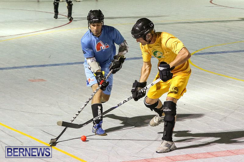 California-Golden-Seals-vs-Quebec-Nordiques-Bermuda-Ball-Hockey-January-21-2015-68