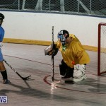 California Golden Seals vs Quebec Nordiques Bermuda Ball Hockey, January 21 2015-69