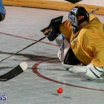 California Golden Seals vs Quebec Nordiques Bermuda Ball Hockey, January 21 2015-70