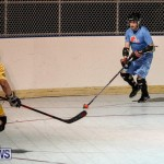 California Golden Seals vs Quebec Nordiques Bermuda Ball Hockey, January 21 2015-71