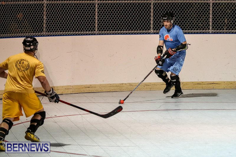 California-Golden-Seals-vs-Quebec-Nordiques-Bermuda-Ball-Hockey-January-21-2015-71